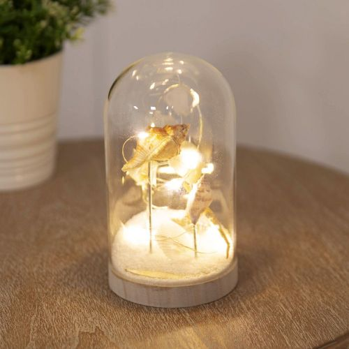 Light Up Glass Seashell Dome Home Ornament - Seashell LED Light